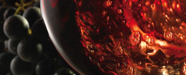 Wine Cellar Online